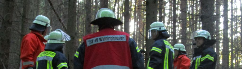 -ba2- brennender LKW, Führerhaus in Flammen